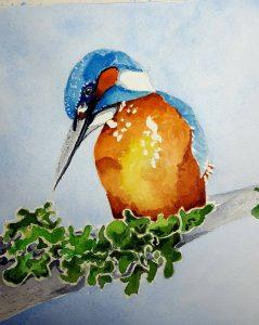 bird watercolor by artist Jullane Rich